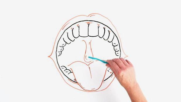 zunge liegt zwischen den zähnen